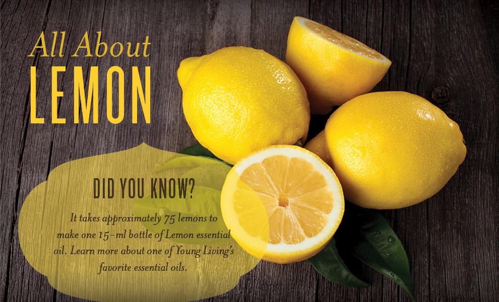 blog-images6m4x-lemon