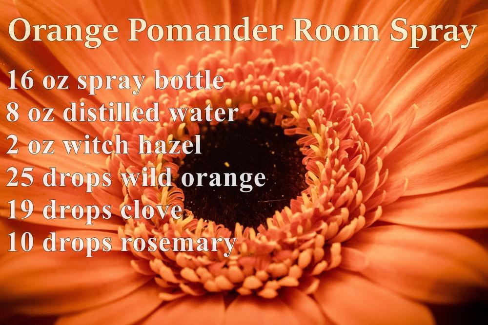 Orange Pomander.jpeg