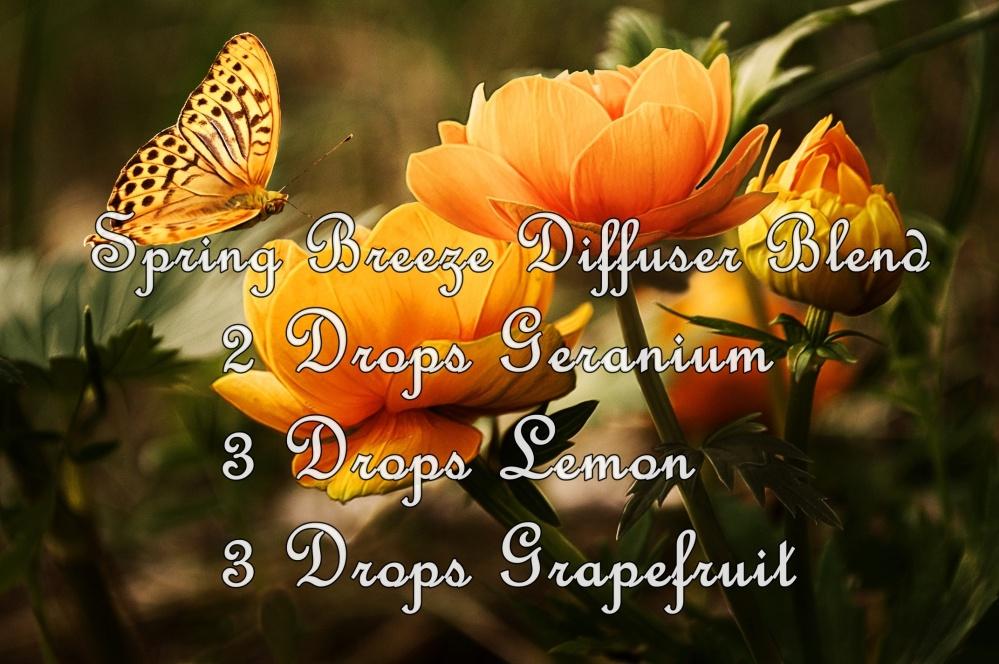 Spring Breeze Diffuser Blend